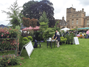 horticultural shows 2016 Newstead Abbey