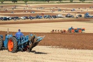 Southwell Ploughing Match 2016 1