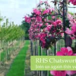 RHSChatsworth2019Header