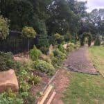 Large variety of shrubs