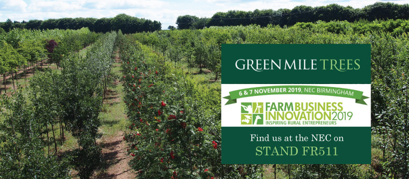 Green Mile Trees Farm Business Innovation Show 2019