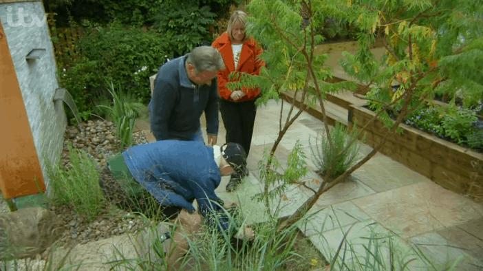 Harri plants his tree